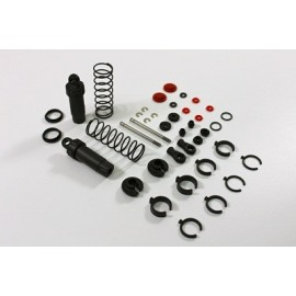 TEAM C 2WD T02088 Front Shocks complete (2) Buggy