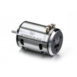 "Brushless Motor 1:10 ""Revenge CTM"" 13,5T Stock"