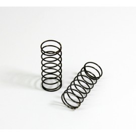 Big Bore Damper Springs front soft (2 pcs) T2evo
