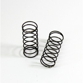 Big Bore Damper Springs front medium (2 pcs) T2e