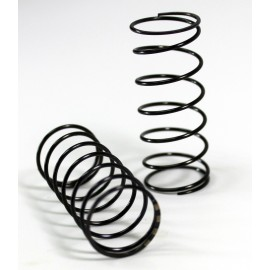 Big Bore Damper Springs front hard (2 pcs) T2evo