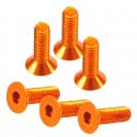 Flat Head Hex Screw orange 3x10mm (6)